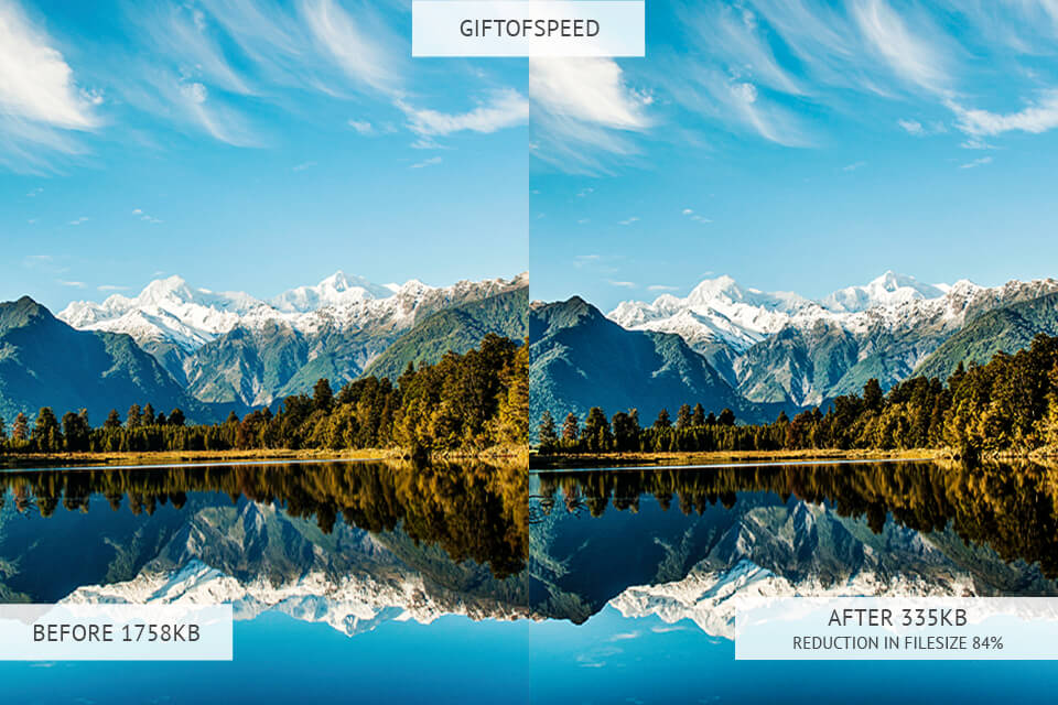GiftOfSpeed image optimizer results