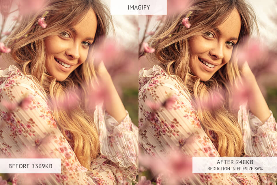 Imagify image optimizer results