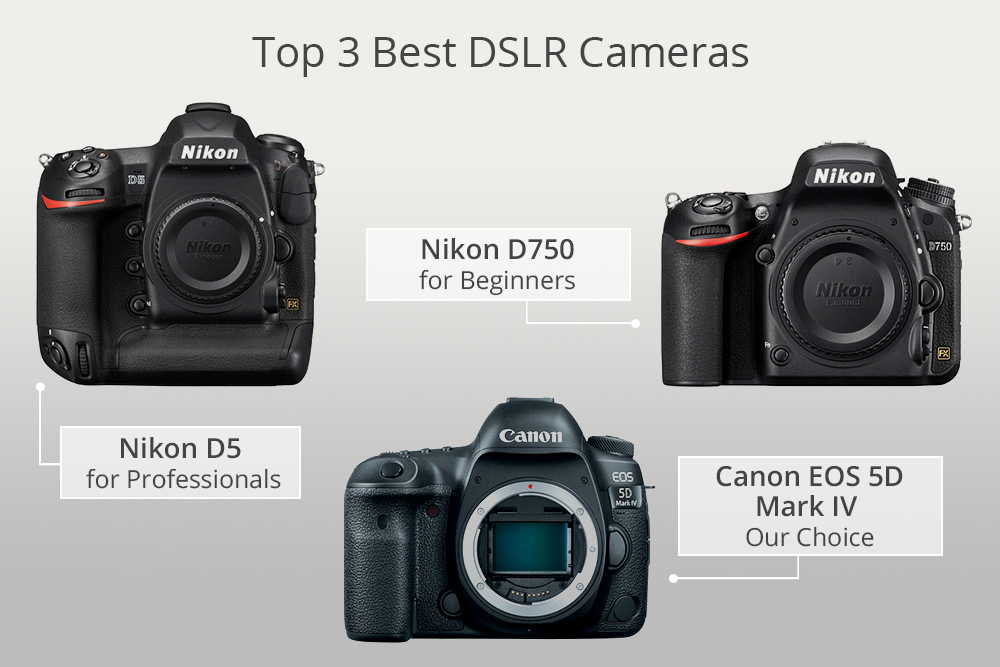 Image result for best beginner DSLR