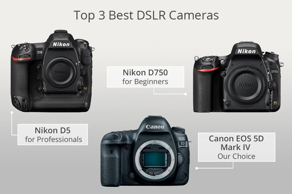 Image result for best beginner DSLR