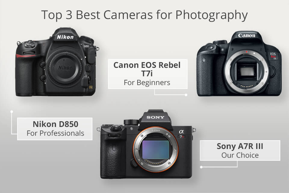 top 3 best cameras for photography