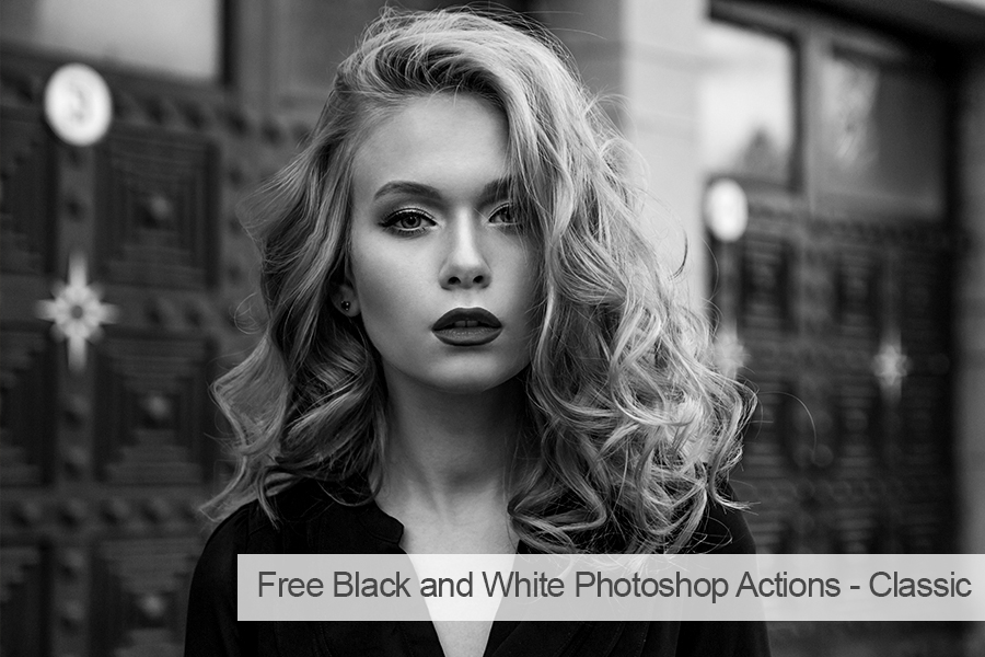 free lightroom actions for portraits bw