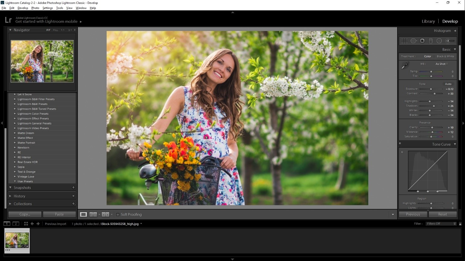 how to create lightroom preset tutorial basic setting