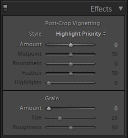 how to create lightroom preset tutorial instrument effects