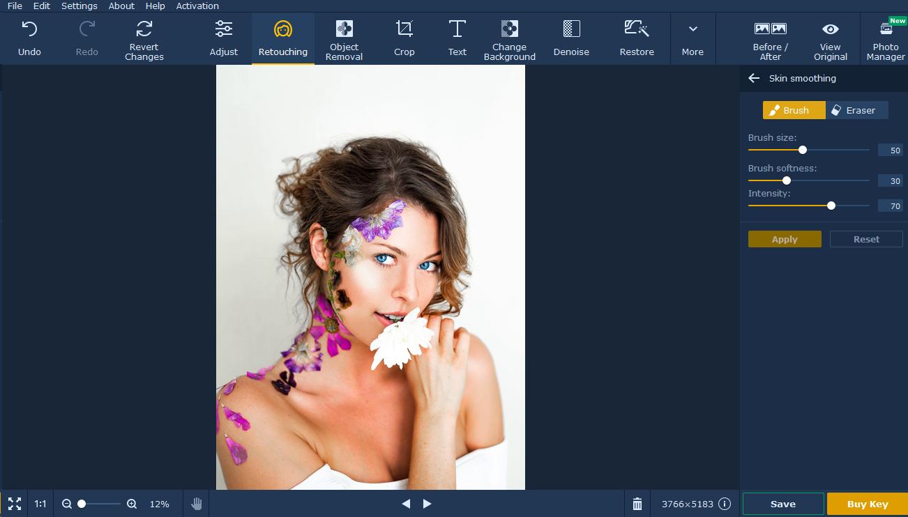 escova de retoque do editor de fotos movavi