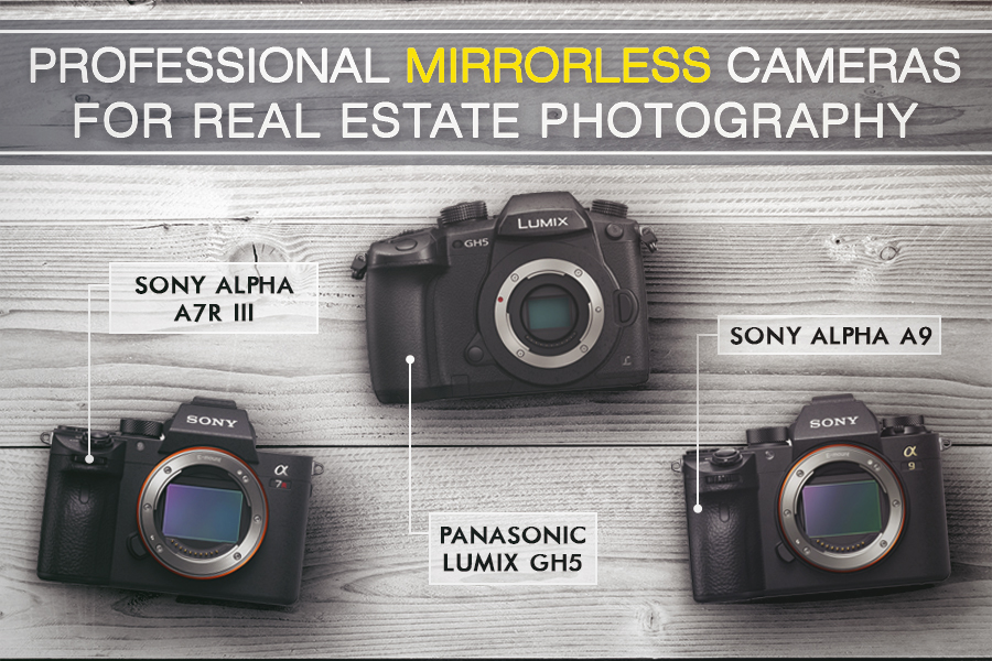 professional best camera for real estate photography